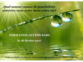 Access Bars Formation 18 février 2017