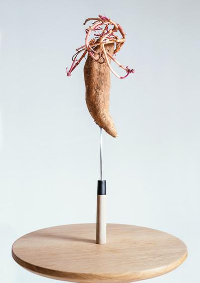 Sweetpotatoe.A3.jpg