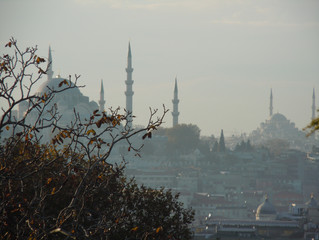East meets West: My unexpected journey to Istanbul