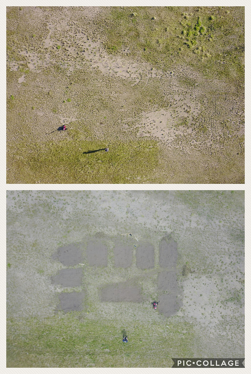Example of a straight down photo of a garden I am developing at my work. Before and After. I intend on editing this more once construction is done.