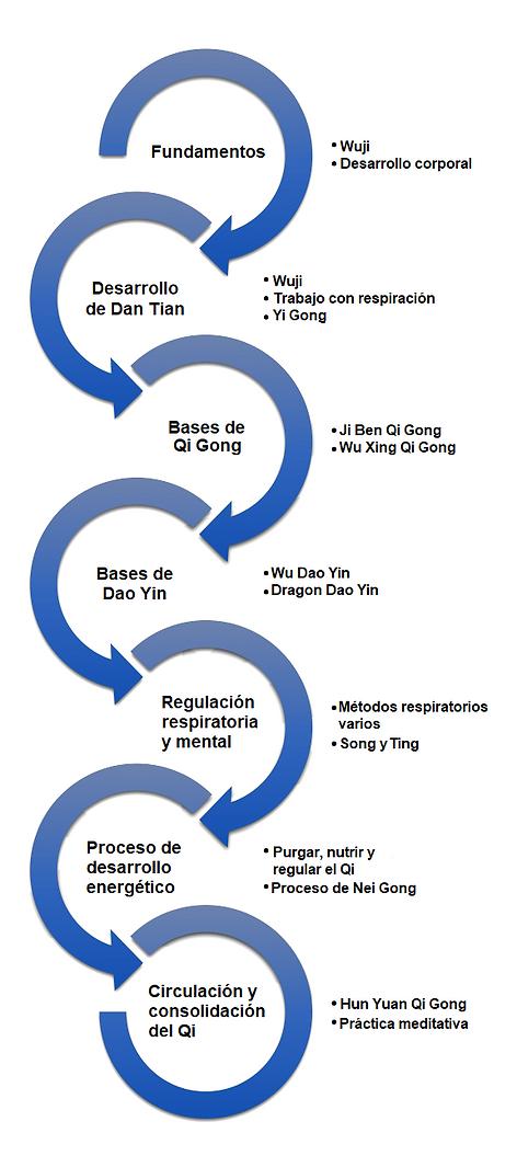 Programa Nei Gong nivel 1
