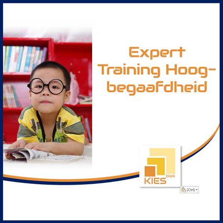 Expert Training Hoogbegaafdheid
