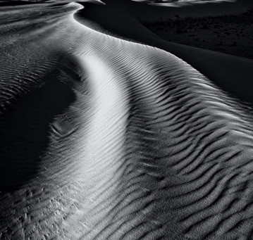 Au désert - Carême 2021