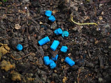 Os Agrotóxicos na Jardinagem