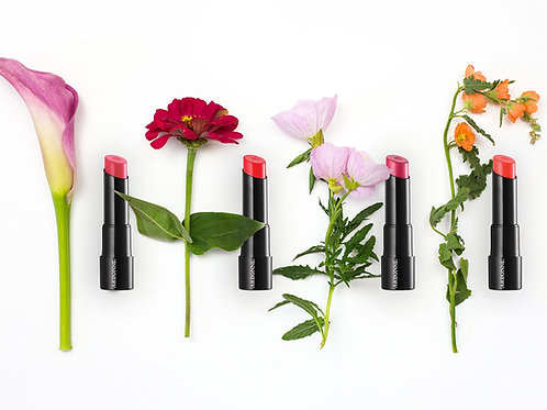 Consultants for BIG BEAUTY SOCIAL