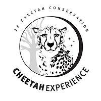 CE logo big.jpg