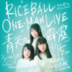 rice_image.jpg