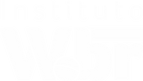 Logo_Wbr_Branco s fundo.png