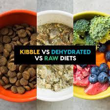 Raw v Kibble Dog Food