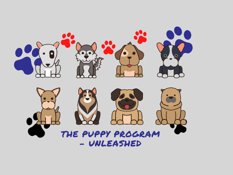 *Book Launch*  The Puppy Program-Unleashed