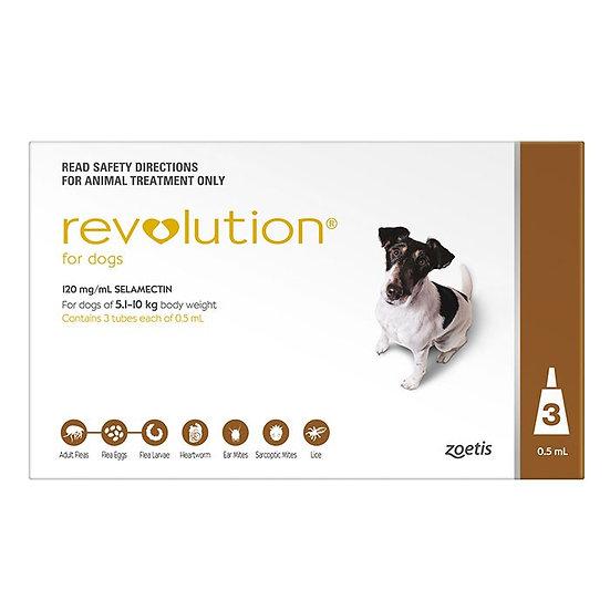 Revolution Brown for Medium Dog