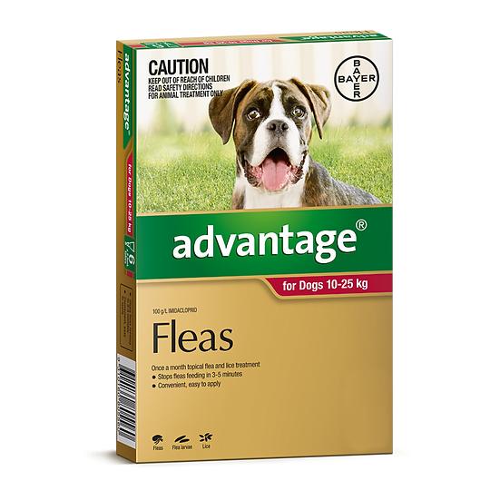 Advantage Large Dog Red