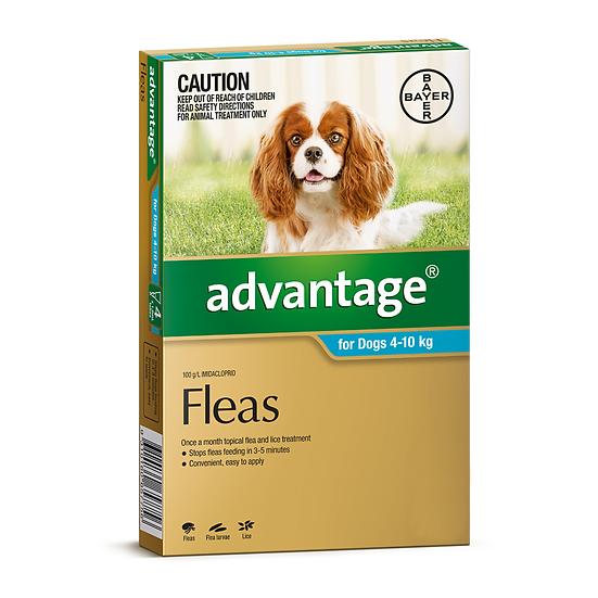 Advantage Medium Dog Aqua