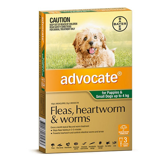 Advocate Small Dog Green