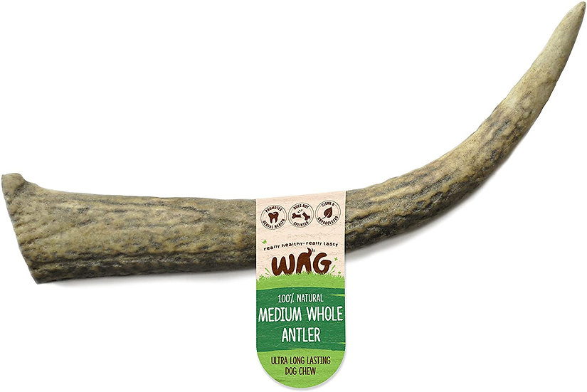 Wag Whole Deer Antler