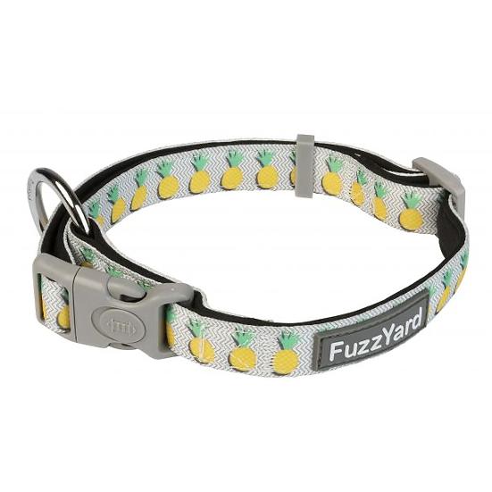 Dog Collar - Pina Colada