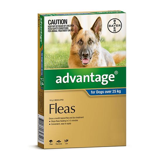 Advantage Dog Extra Large Blue