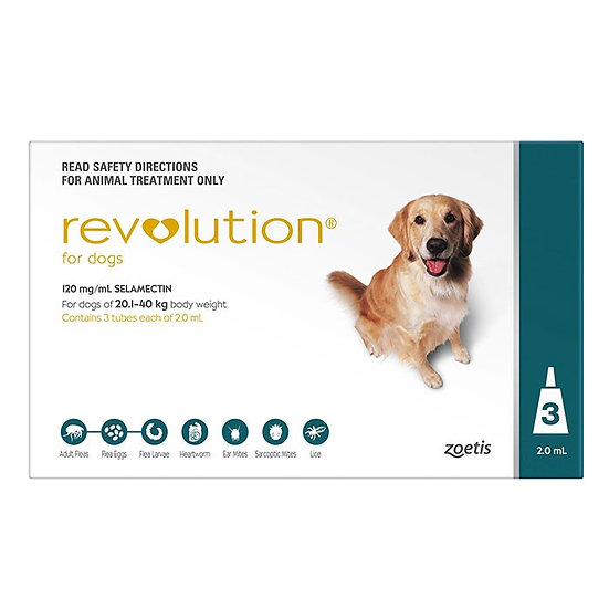 Revolution Green for Extra Large Dog