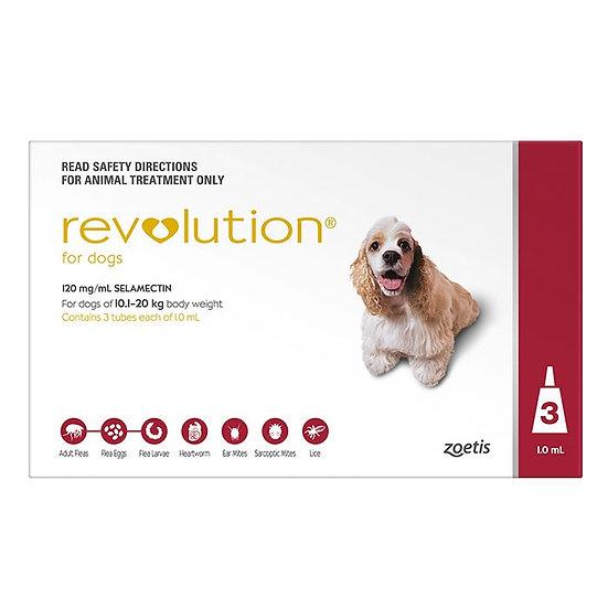 Revolution Red for Large Dog