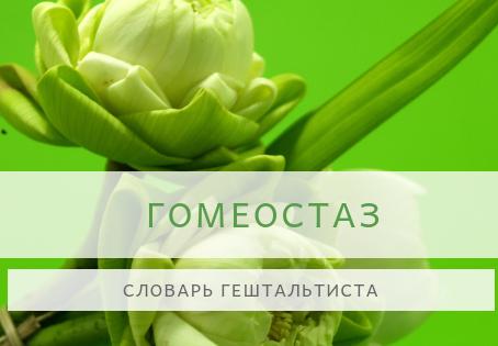 Словарь гештальтиста -  ГОМЕОСТАЗ