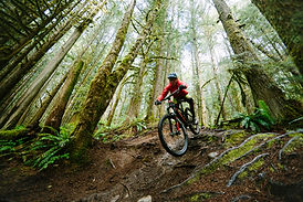 Mountain Biking in Squamish by Sterling Lorence