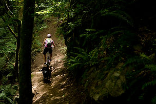 Squamish Mountain biking by Sterline Lorence
