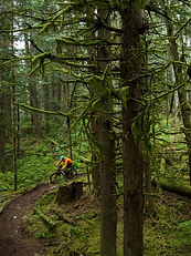 Sea to Sky Mountain Biking by Sterline Lorence