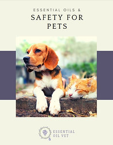 essential oils and safety for pets.jpg