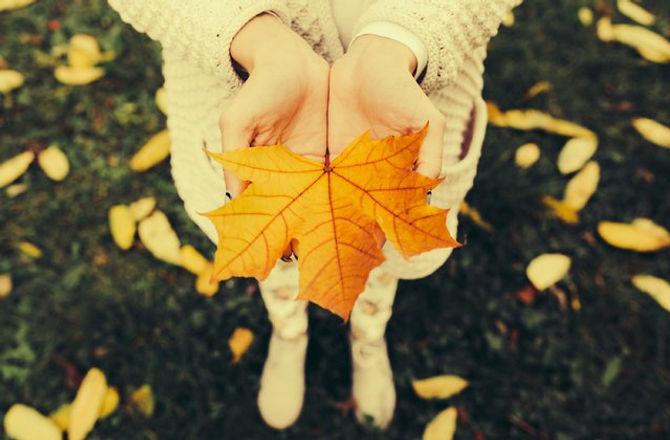 Fall wellness tips.jpg