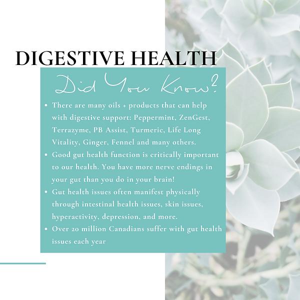 DYK Digestive (1).png