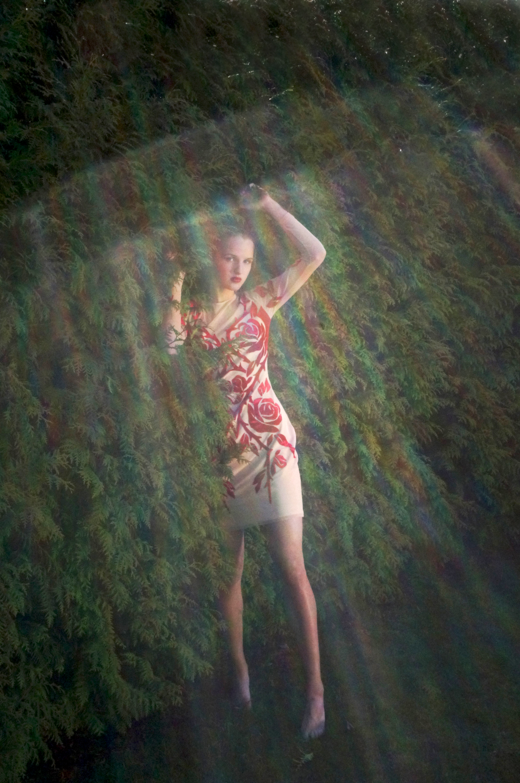 Riina_Poldroos_kevad1411
