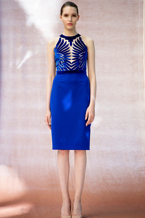 Cobalt Hawk Dress