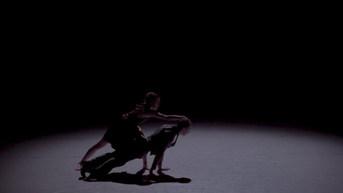 Black Eyed Dog, Sacramento Ballet