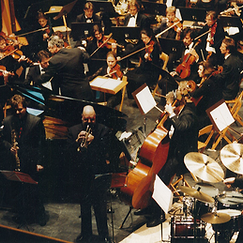 Argovia Philharmonic.png