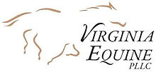 VA Equine logo.jpg