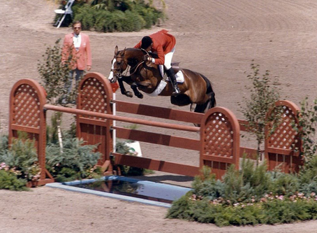REGISTRATION IS OPEN! Show Jumping Clinic with Olympic Gold Medalist, Joe Fargis