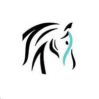 Aspire equestrian logo.jpg