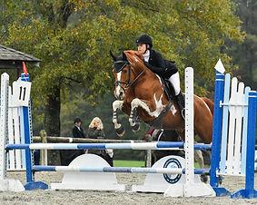Novice Horse-0001.jpg