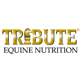 Tribute-Logo-1.png