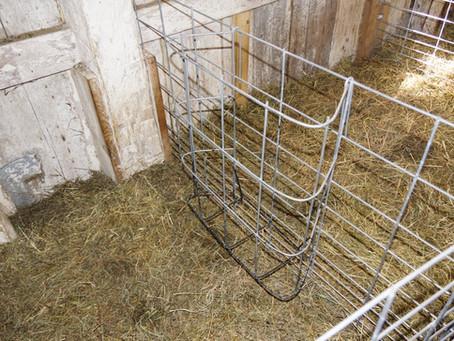 Building Feeders for Lambing Jugs