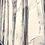 Thumbnail: Les voiles blanches...   40x40cm