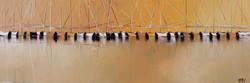 Jeux de reflet, 40x120cm