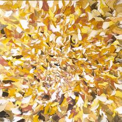 L'envolée de lumière | 100x100cm