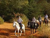 L'Italie offre des nombreuses possibilités de voyage aux amateurs des promenades à cheval pour un team building unique et inoubliable.   Du nord au sud, y compris les îles comme la Sardaigne, vous trouverez plusieurs endroits où vos collaborateurs pourront partir à la découverte du territoire méditerranéen et à la découverte de localités merveilleuses vue mer.