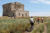Pour votre séjour dans le sud de l'Italie, nous vous proposons de visiter les Pouilles, lieu où vous succomberez au charme de ses côtes spectaculaires, de son riche patrimoine culturel et de sa gastronomie raffinée. Les différentes villes et villages comme Bari, Alberobello, Ostuni ou encore Polignano a mare sont les symboles de la région totalement immergés entre la nature et la magnifique architecture baroque du sud de l'Italie. C'est donc pour cette occasion que nous vous proposons un tour complet en vélo de la région !