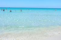 Paradisiaque, le littoral des Pouilles envoûte autant qu'il peut décevoir… Sous la petite ville de Gallipoli, sur le littoral Ouest des Pouilles, on trouve le Parco Naturale Regionale Isola di Sant'Andrea. Bordant les eaux, il offre des belles possibilités de baignade à Punta della Suina et au Lido Pizzo. On peut même se balader entre les pins jusqu'à la Torre voisine ou jusqu'à la Punta Pizzo non loin pour admirer le point de vue marin et organiser un super open bar sur la plage pour tous vos collaborateurs !