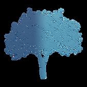 Dr. Teresa Paine logo