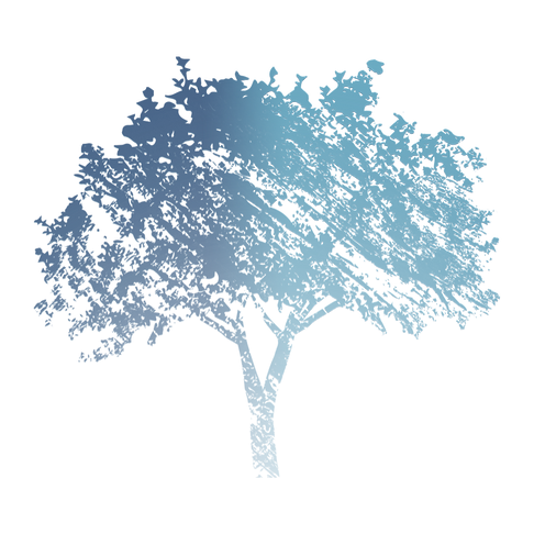 counseling logo, Dr Teresa Paine, Etched tree logo