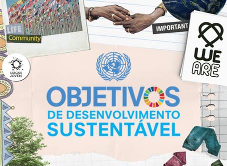 Já ouviu falar sobre os Objetivos de Desenvolvimento Sustentável?