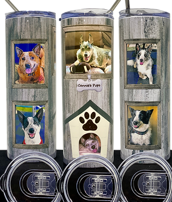 3 views of dog house.png